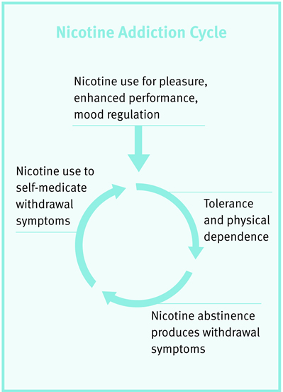 Nicotine Addiction Cycle